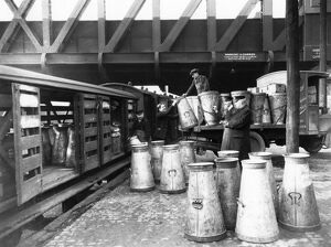 Collecting milk churns at Paddington Station, c1920s