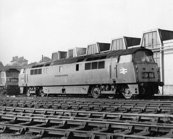 Class 52 locomotive built by BREL Swindon. Seen here at Bristol (Bath Road) depot in 1973