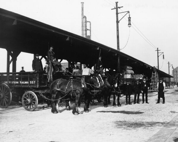 Horses are prepared for the transportion of parcels to and from the stations