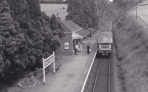 <b>Ballingham Station</b><br>Selection of 1 items